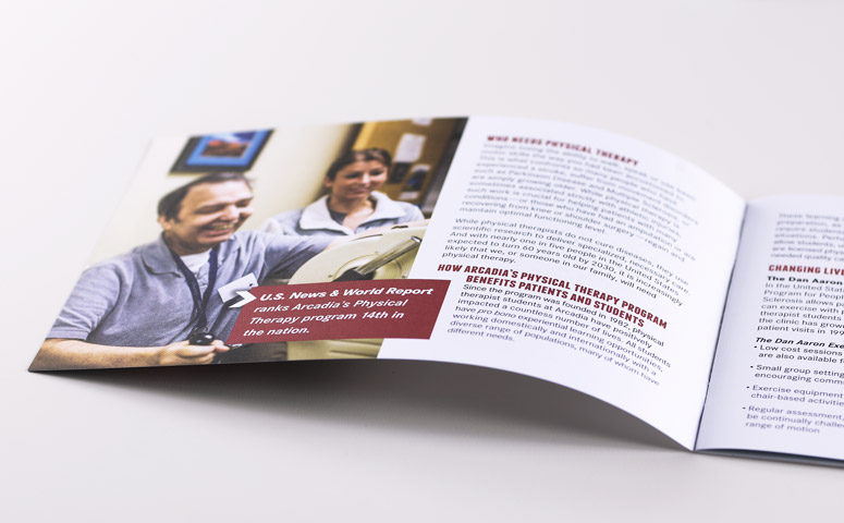 Physical Therapy Campaign Brochure – Dan Brumbach