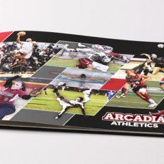 Arcadia Athletics Brochure